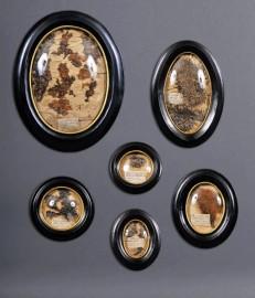 Herbiers Napoléon III - Set de 6