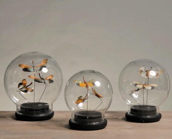 """Globes Papillons """"Cyrano"""" - Set de 3"""