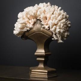 Corail Blanc, Composition XVIIIeme