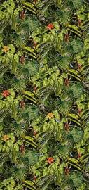 Wall Paper AMAZONIA, Roll 960x50cm
