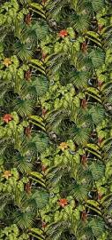 Papier Peint AMAZONIA, Rouleau 1000x50cm