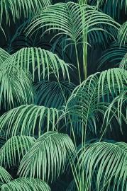 Papier Peint Feuillage RAIN FOREST, Rouleau 1000x50cm