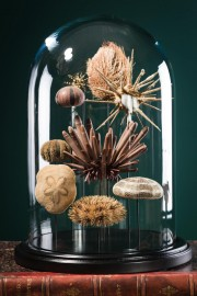 Urchins Family under Globe Napoleon III Style