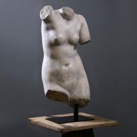 Buste de Vénus sur Socle - H79cm