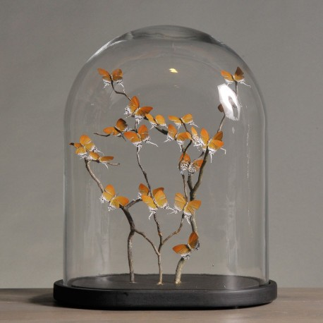 Globe Ovale - Papillons Orangés