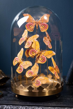 Globe de 8 papillons Idea Blanchardi