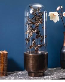 11 Black & White Butterflies in Capsule Glass