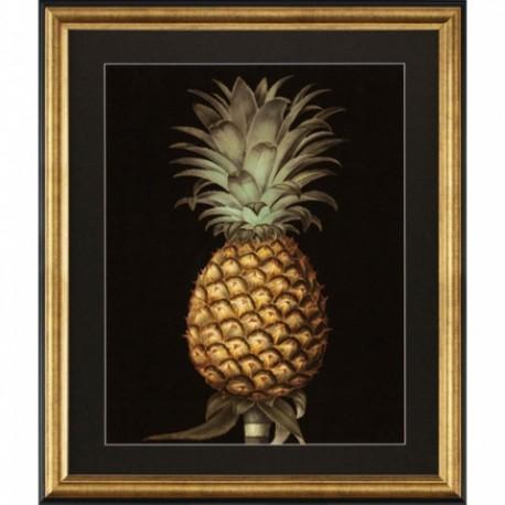 Paire de gravures Ananas
