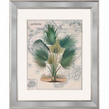 """Set de gravures """"West & East Indies"""""""