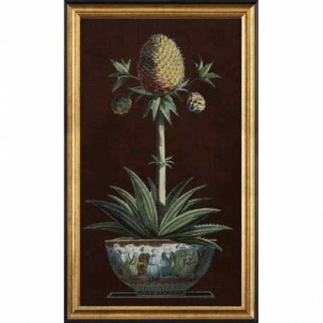 Gravures ananas en pot