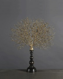 Gorgonian Reproduction Golden Version