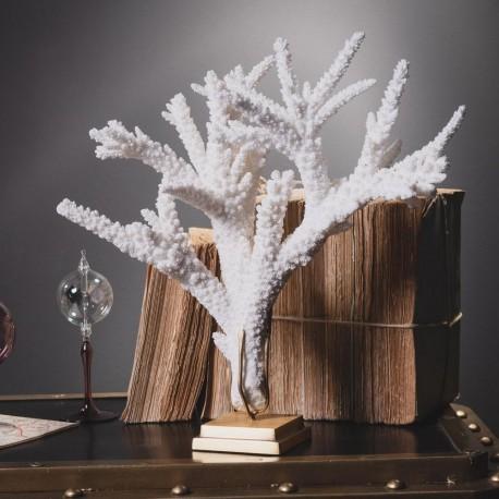 Branch Coral on Brass Base