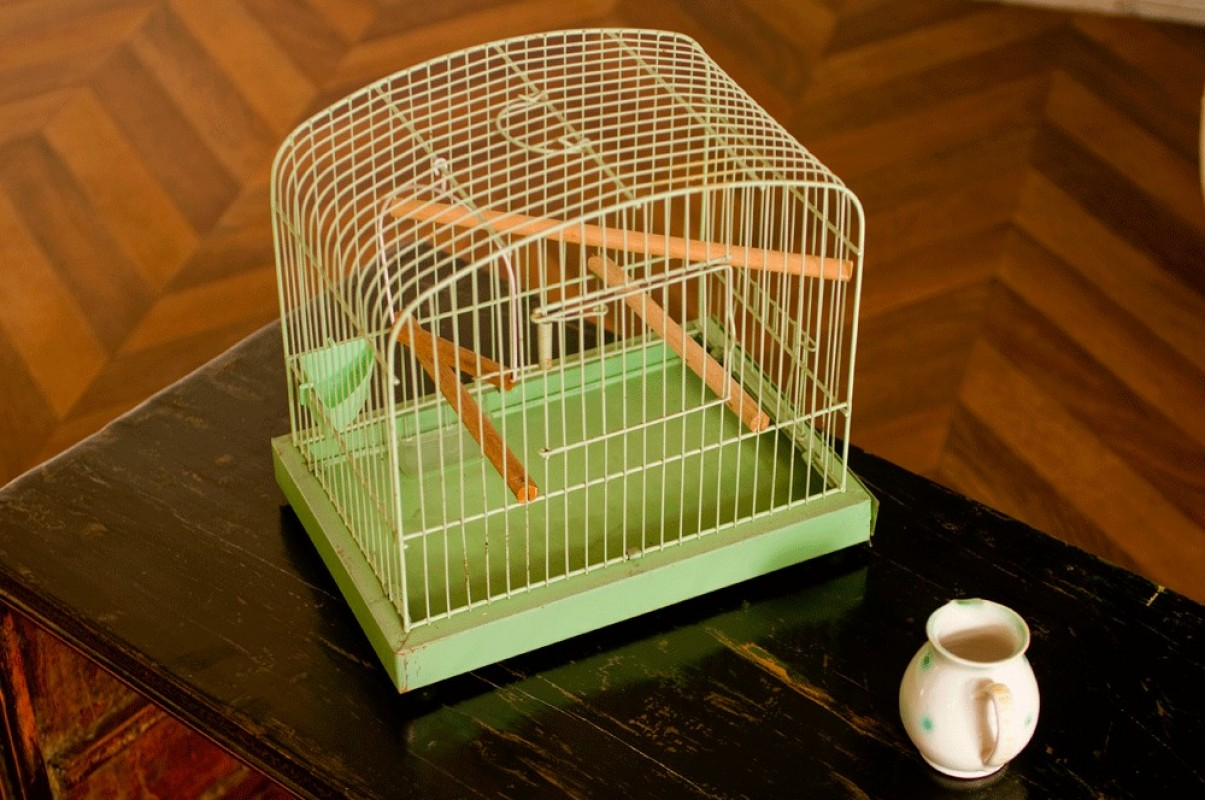 Bird Cage Vintage In Plastic Green 1960 60s