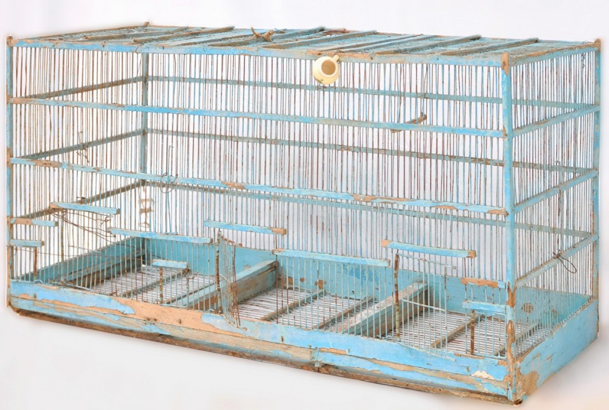 cage oiseaux cage vintage r tro ancienne bois. Black Bedroom Furniture Sets. Home Design Ideas