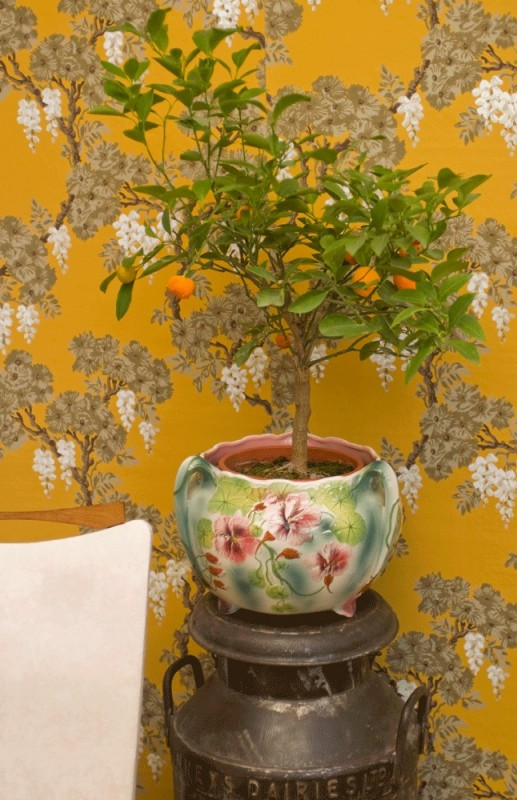 cache pot faience saint cl ment st cl ment france vert rose rose pale r tro ann es 1900. Black Bedroom Furniture Sets. Home Design Ideas
