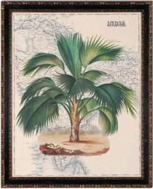 """Gravures """"India & Africa"""" - la paire"""