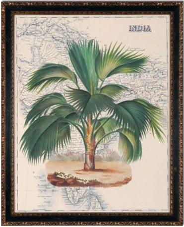 """Gravures """"India & Africa"""" - The Pair"""