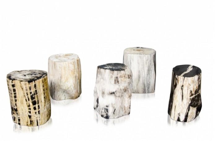 Tabourets en bois fossilisé