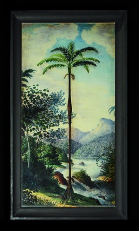 Palm Tree Engraving - Alexander