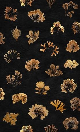 Papier Peint Algues Rouleau 1000x50cm