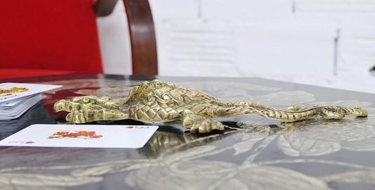 Bronze Salamander
