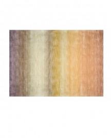 Tapis Indien Multicolore 200x140cm