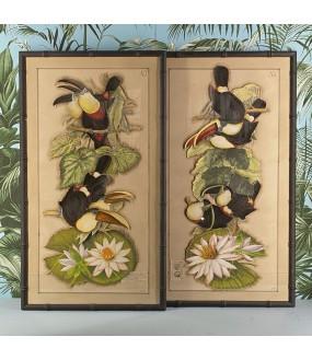 Tableaux de Toucan, collages d'anciennes gravures peintes à la main.