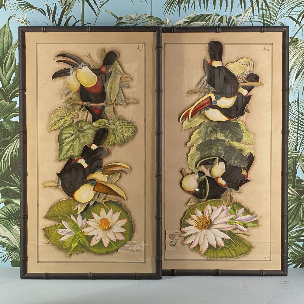 Toucans Engravings Made by Collages, Italy