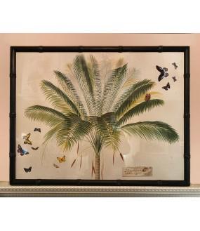 Merveilleuses gravures de Palmiers aux Papillons imprimées artisanalement.