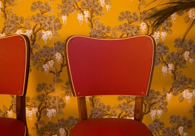 Vintage chairs 50s