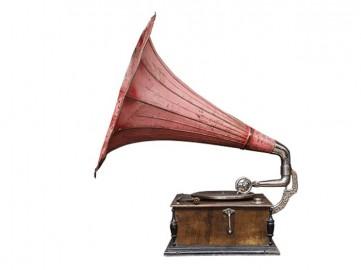 Gramophone rose